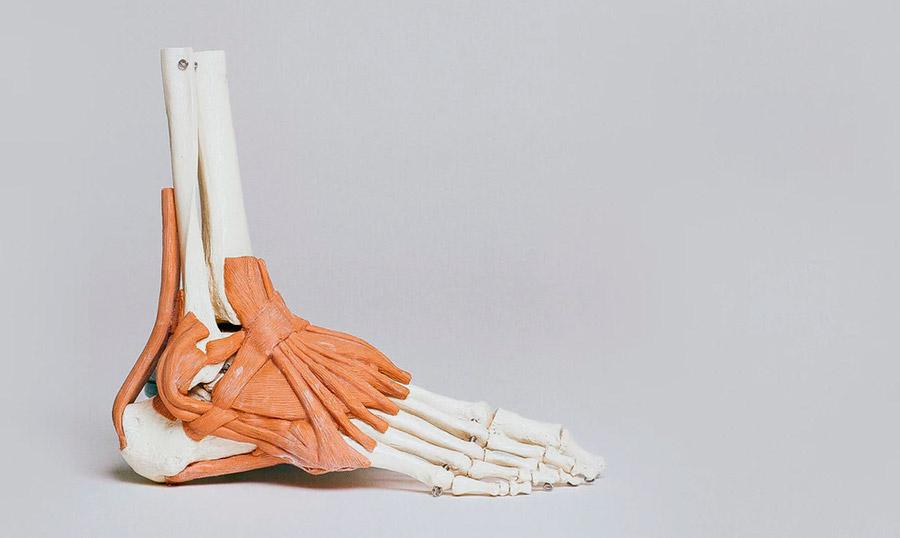 estudiar fisioterapia en una universidad madrileña