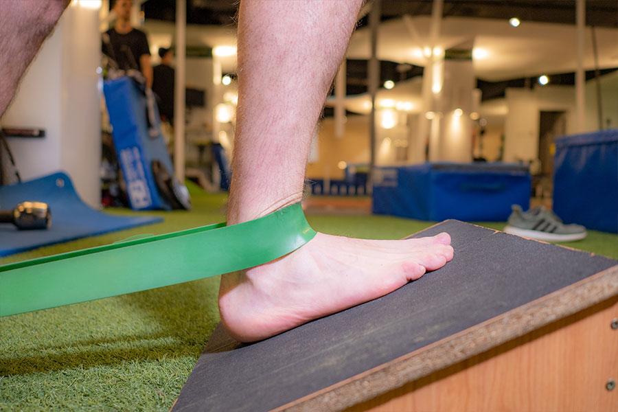 mecanotransduccion-como-ejercicio-fisioterapeutico